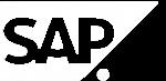 sap software development services